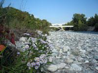Drac Aval, une nouvelle Réserve Naturelle Régionale de St Georges de Commiers à Claix